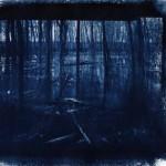 Riverspective_Cyano
